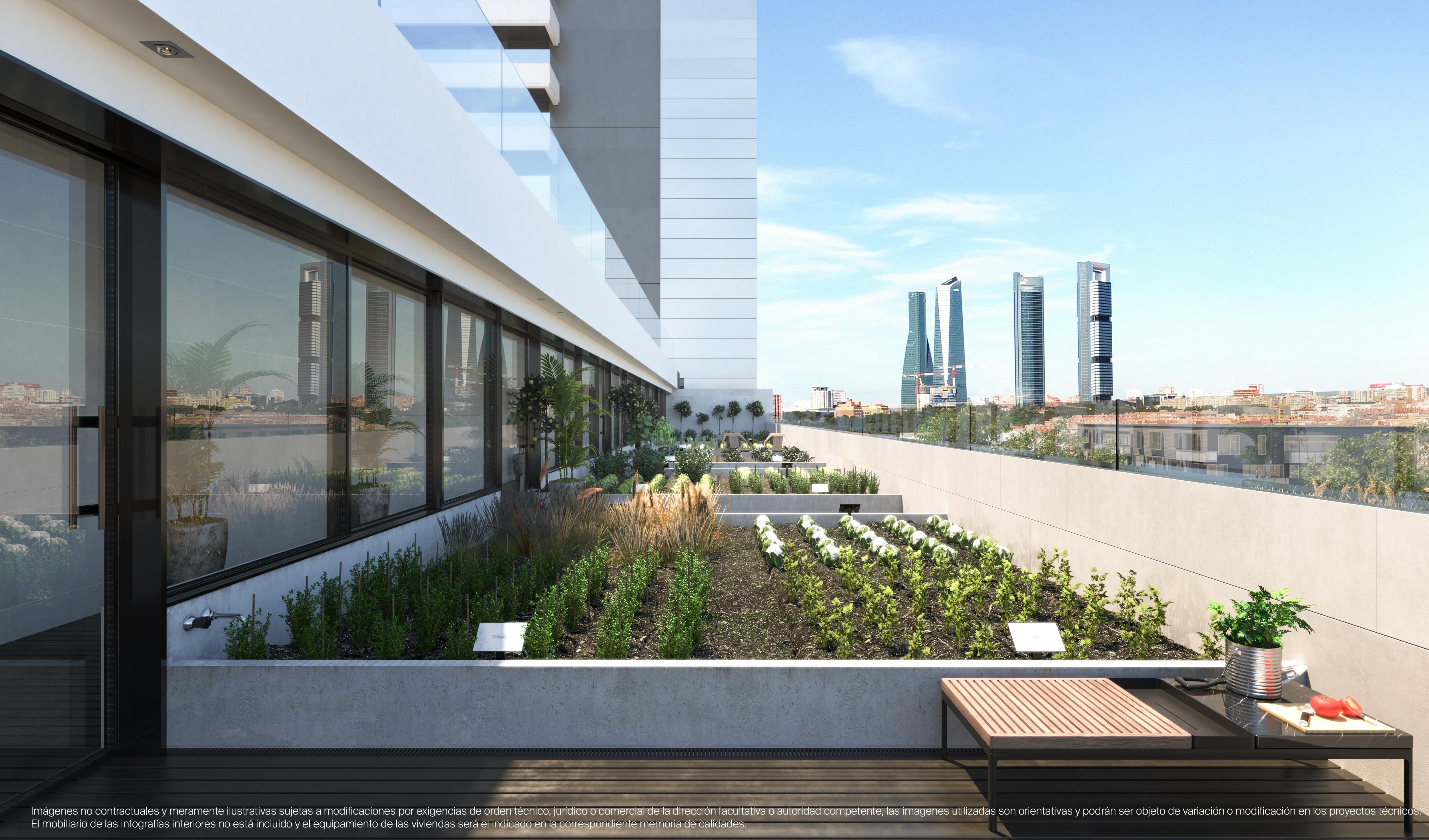 El huerto urbano en una de las plantas del edificio
